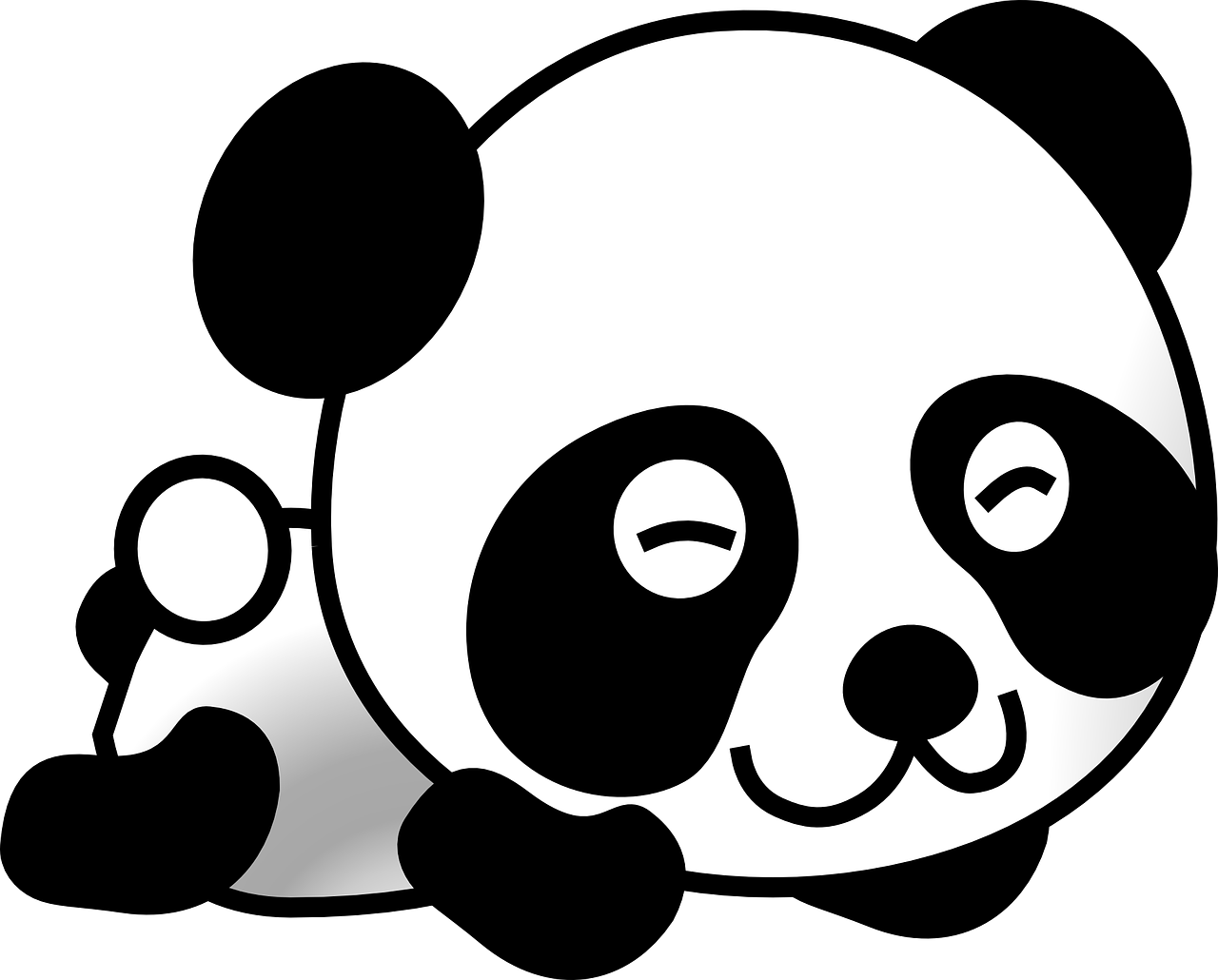 Panda 4.1… Are You Ready?